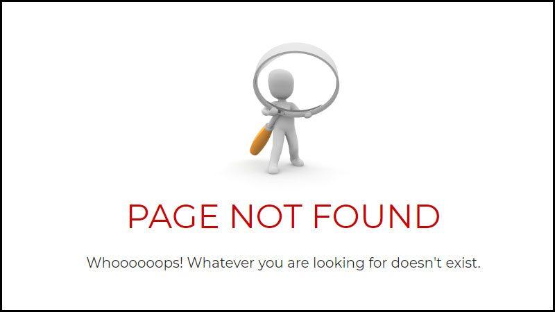 404 Page - Broken Link Example