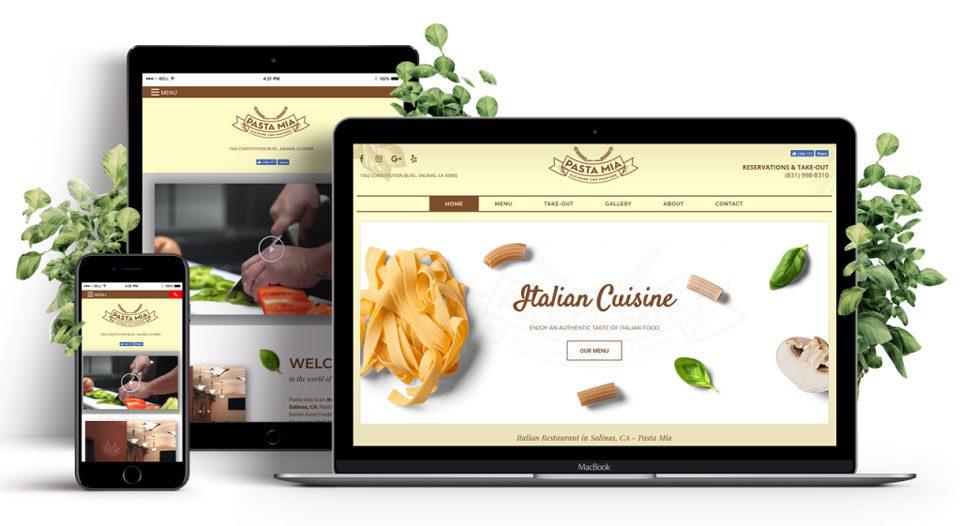 website developer danville illinois