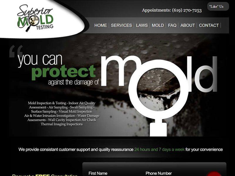 Superior Mold Testing